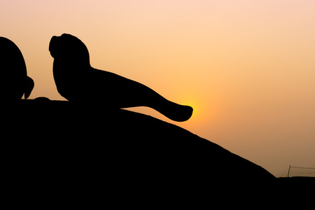 shilouette: Silhouette of lifestyle. Stock Photo