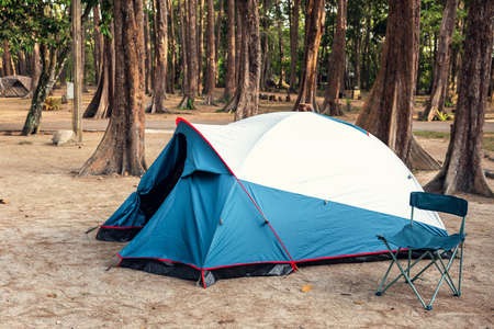 Camping Tent and Resting Chair at Campsite on Nature Pine Forest Background, Family Vacation and Outdoor Leisure Activity Camp Fire in National Park. Natural Adventure Backpacking and Holiday Trip. 写真素材