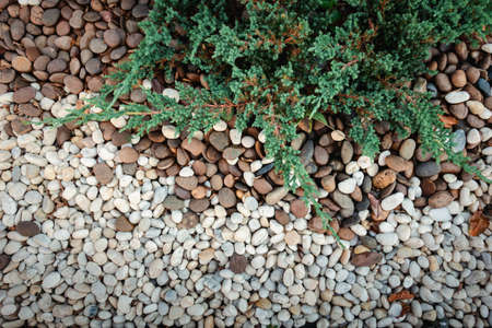 Close-Up of Nature River Gravel Abstract Backgrounds, Gravel Stone Texture Background for Home Landscape Decorative and Gardening. Exterior Landscaped Design and Flooring Decoration