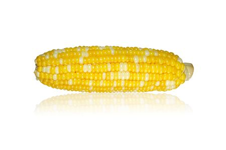 Corn on white background with clipping path Stock Photo