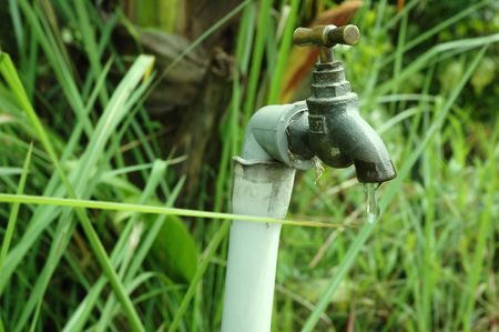 Leaking water faucet in green field Stock Photo
