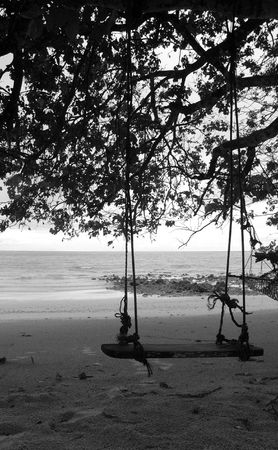 Swing and tree silhouette on a tranquil beach in black and white