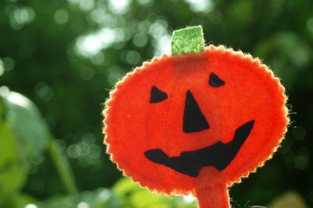 Halloween pumpkin Jack O-lantern backlit outdoor