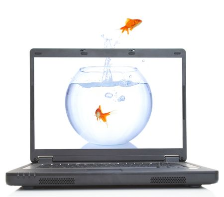 goldfish escaping from laptop on white