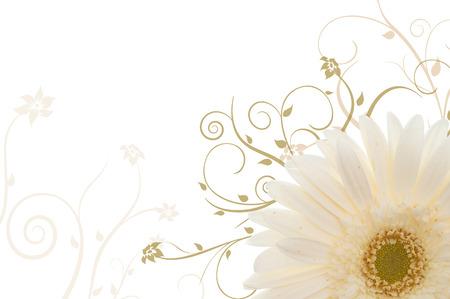 flor margarita de color blanco con adornos dibujos vectoriales Foto de archivo - 1385602