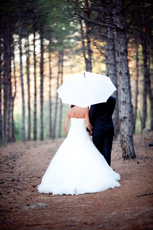 wedding couple happy together at the forest Stock Photo - 8738486