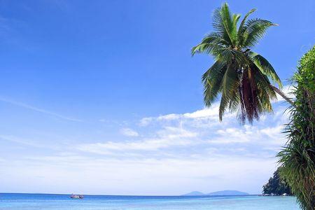 Tropical island in Malaysia.