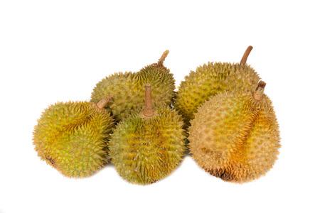 studio shots: Malaysia tropical fruits durian in studio shots.
