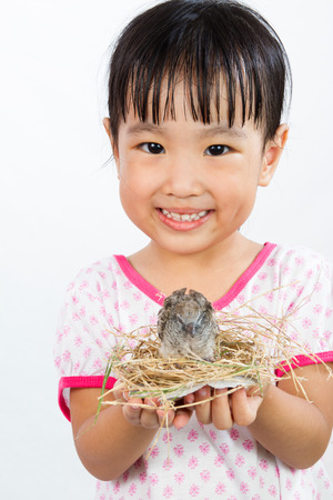 upbringing: Asian Little Chinese Girl Holding Small Bird in hands isolated on White Background Stock Photo