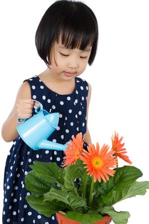 Poco asiático chino riego de la flor de la muchacha aislado en el fondo blanco