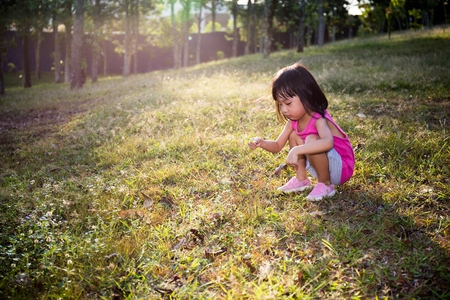 asia children: Happy Asian Chinese Little Girl Picking Wild Flowers on field. Stock Photo