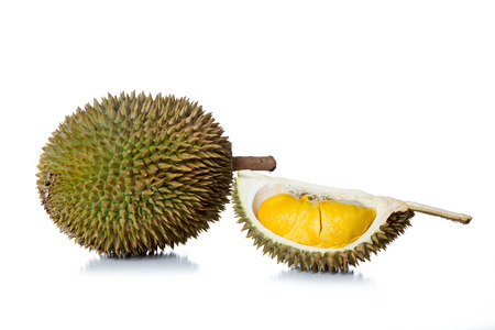 Malaysia fresh tropical durian fruit in isolated white background