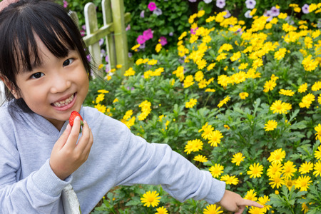 Asian chinese little girl posing next to Bellis perennis field outdoor