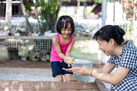 Asian Little Chinese Girl and mother playing wirh duck in the Outdoor Farm