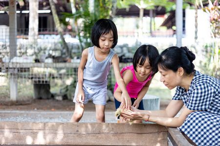 Asian Little Chinese Girls and mother playing wirh duck in the Outdoor Farm 스톡 콘텐츠