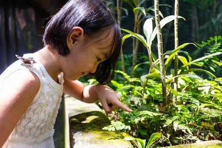 Asian Little Chinese Girl watching butterfly at the zoo