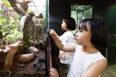 Asian Little Chinese Sisters watching insects at the zoo Stock Photo