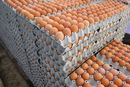 Eier im Paket Lizenzfreie Bilder - 46785264