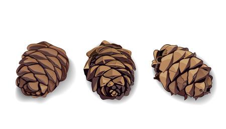 Icone del cono impostate per il tuo design. Pigna. Pigna. Pigna. Pigna. Illustrazione vettoriale realistico isolato su sfondo bianco