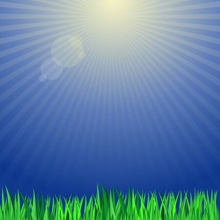 Green grass on a background of the suns rays. Background with green grass and blue sky. Vector illustration