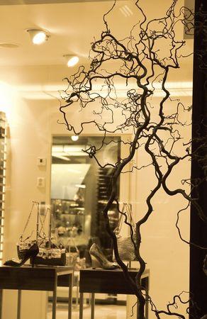 showcase through window with women shoes