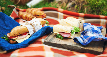 picknick: picnic at forest with sandwiches and croissant Stock Photo