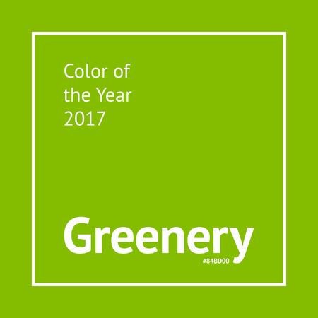 녹지 색상 샘플. 2017 년의 유행 패션 컬러
