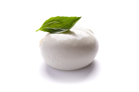 mozzarella and basil leafe isolated on white background