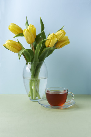 yellow tulips and cup of black tea on green and blue background