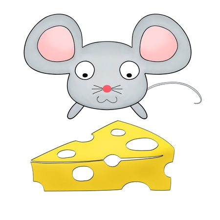 little mouse watching cheese isolated on white photo
