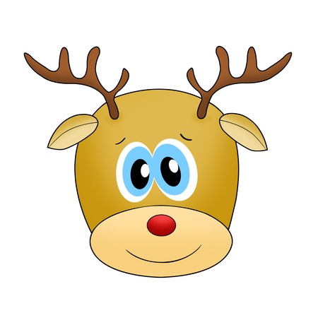 reindeer face isolated on white photo