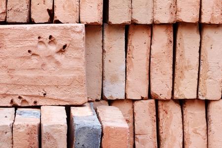 red brick and dog footprint photo
