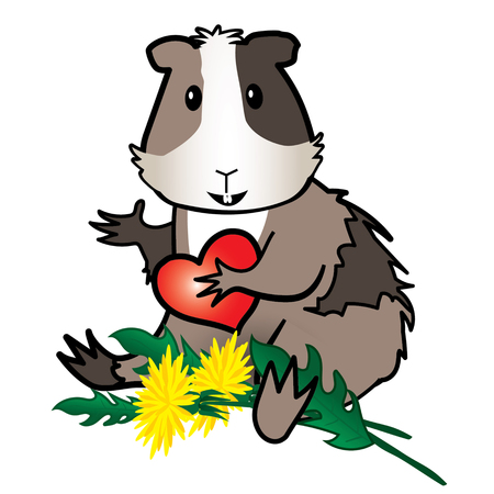 Hamster, Guinea pig with dandelion -isolated on the white background Illustration