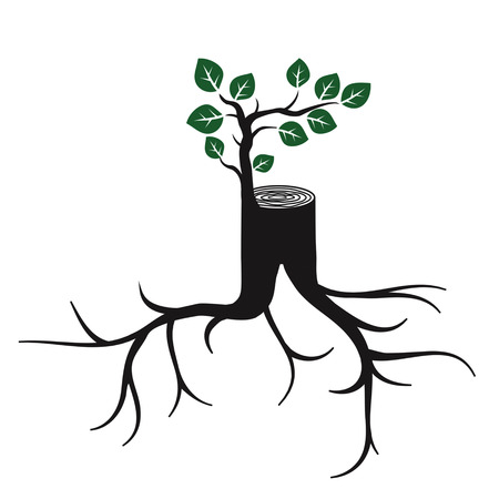 revitalize: Rejuvenate, tree trunk and branch with the leaves