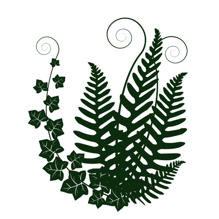 Forest plants on plain background. Illustration