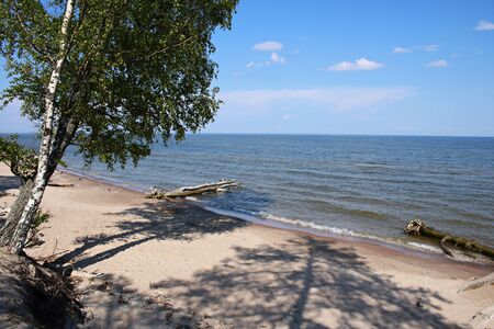Cold waters of the Gulf of Riga and wildlife along the extreme coast.