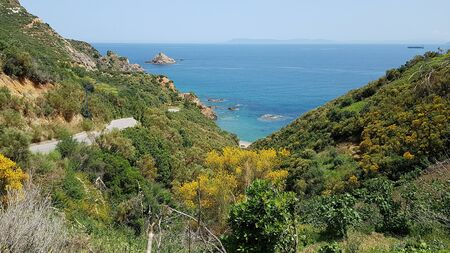 Beautiful wildlife of the mountains and the blue Mediterranean Sea in sunny Algeria.