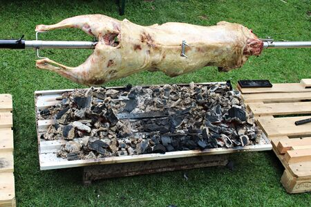 Large carcass of a sheep on a spindle is cooked on coals in the open air