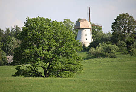 Old windmill between green trees on a hillside in Latvia on a sunny May day 2019.