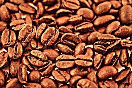 coffee beans Stock Photo - 1029356
