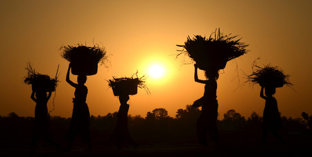 mujeres trabajando: silueta de cereales explotación humana en la cesta, la vida rural Foto de archivo