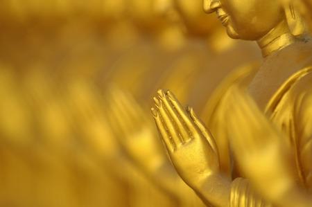 backlash: Buddha in a row