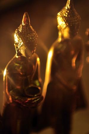 backlash: Light golden Buddha