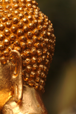 backlash: Buddha ears