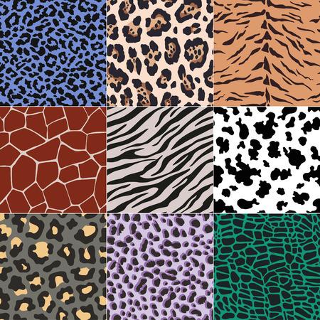 repeated animal skins print set 일러스트