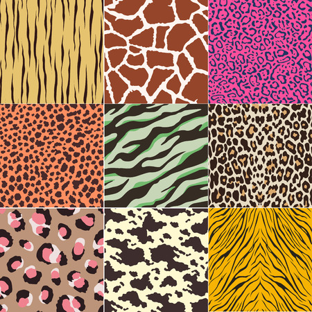 repeated animal skins print set Illustration