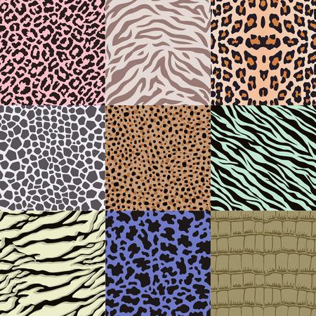 snakeskin: repeated wildlife animal skin pattern