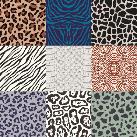 snakeskin: repeated wild animal skin texture pattern
