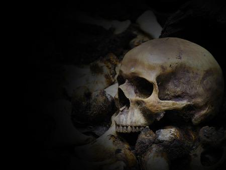 Skulls and pile bone on the ground hole  Still Life image Фото со стока