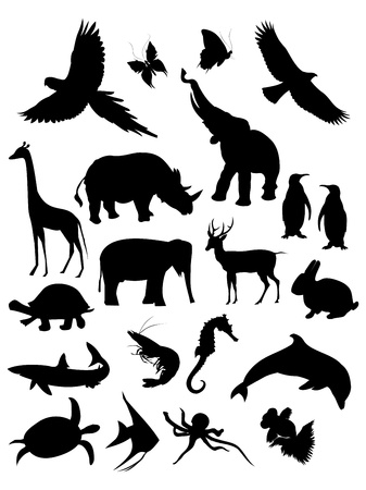 Collection of animal silhouette, isolation in white.